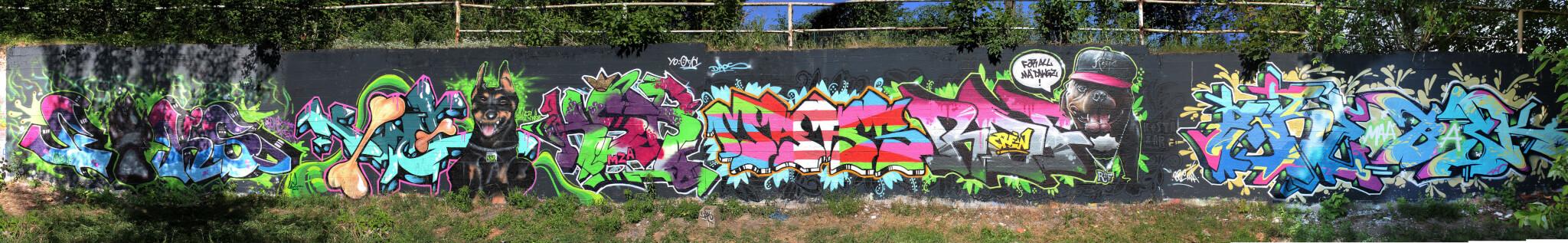 legales Graffiti in Eisenach - Max Kosta 2015